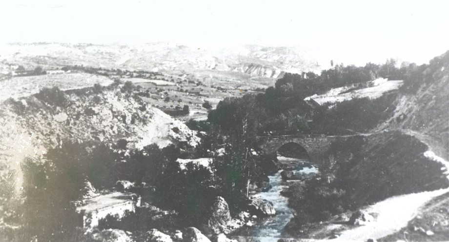Չմշկածագ քաղաքի վերի կամուրջը եւ շրջակայ պարտէզները