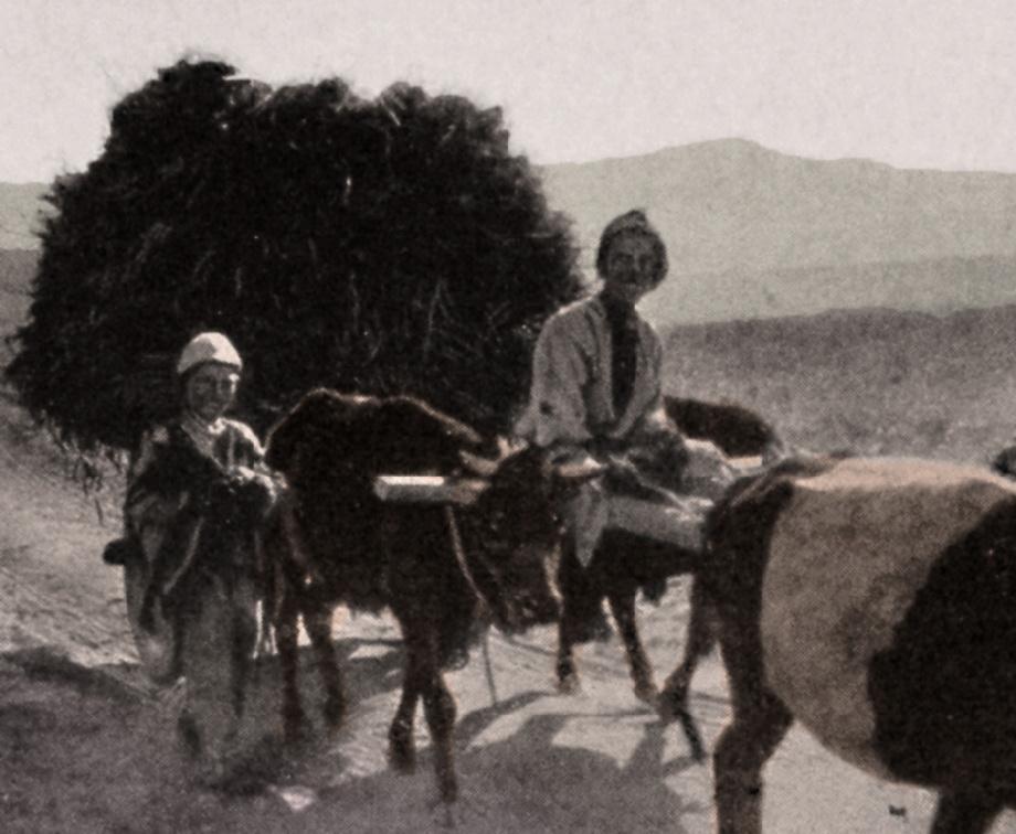 Ahlat/Akhlat (V. Pietschmann, Durch kurdische Berge und armenische Städte, Wien, 1940)
