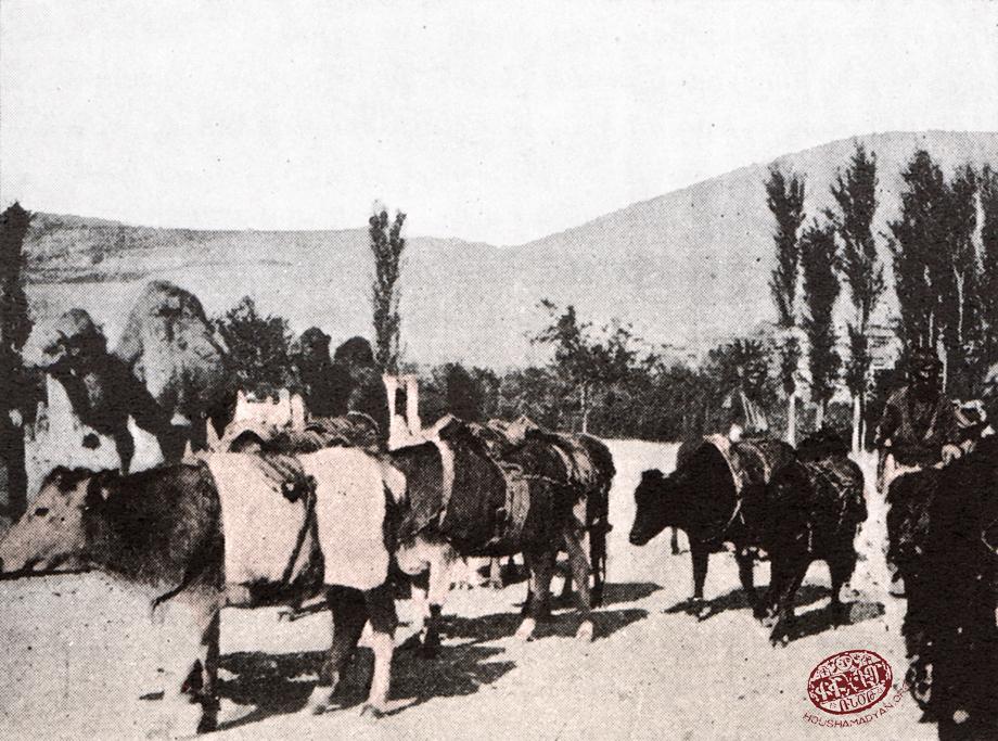 Near Marash. Transportation of commercial goods (Source: Kalusdian, op. cit.)